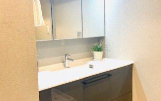 シャワー付き三面洗面化粧台(内装)